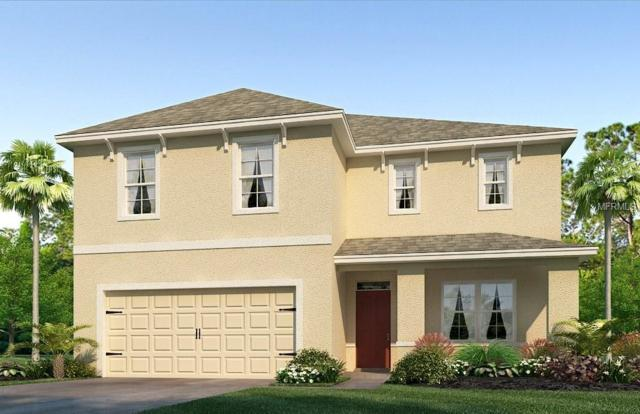 12005 Gillingham Harbor Lane, Gibsonton, FL 33534 (MLS #T3146006) :: Dalton Wade Real Estate Group