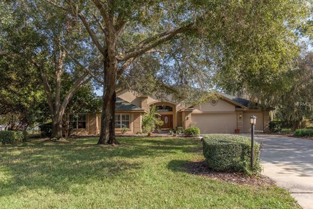 8922 Skymaster Drive, New Port Richey, FL 34654 (MLS #T3146012) :: Cartwright Realty