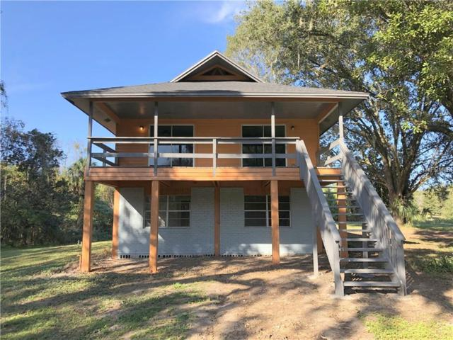 34025 Blanton Road, Dade City, FL 33523 (MLS #T3146039) :: Revolution Real Estate