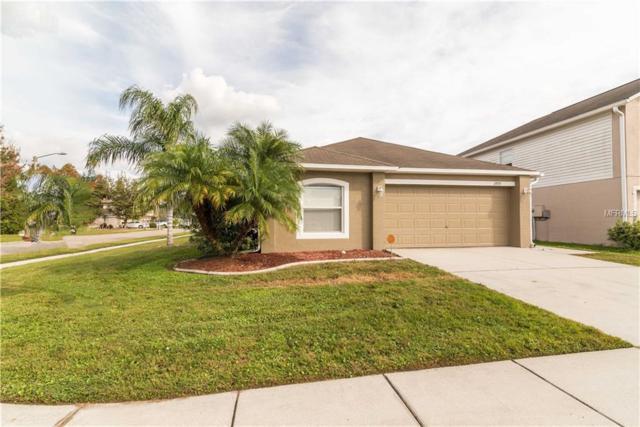 2935 Mingo Drive, Land O Lakes, FL 34638 (MLS #T3146067) :: Team Virgadamo