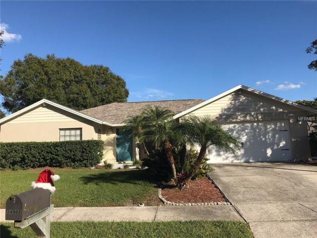 14903 Salamander Place, Tampa, FL 33625 (MLS #T3146119) :: Cartwright Realty