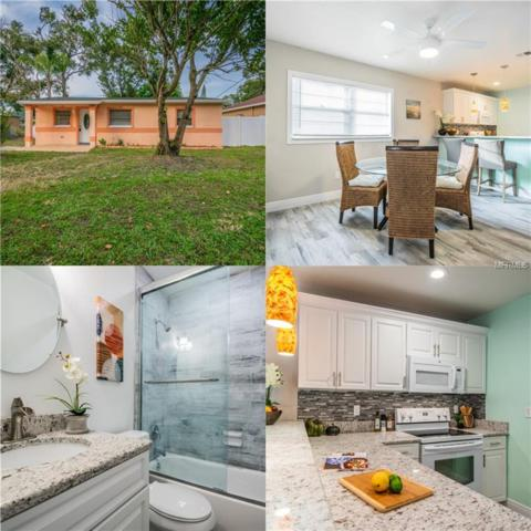 1737 W Powhatan Avenue, Tampa, FL 33603 (MLS #T3146192) :: Griffin Group