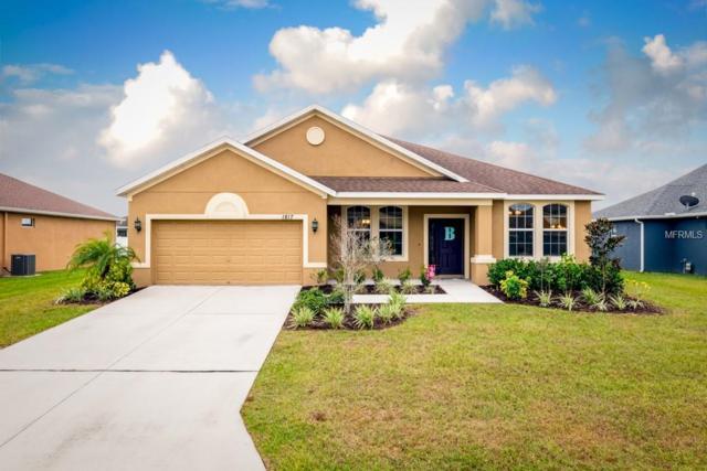 1817 Via Chianti Street, Plant City, FL 33566 (MLS #T3146229) :: Dalton Wade Real Estate Group