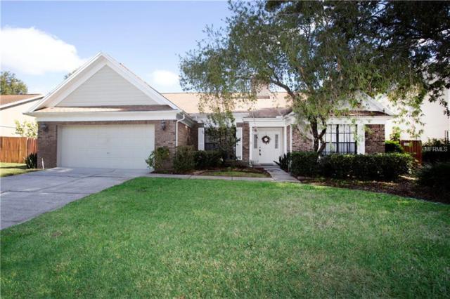 15706 Jericho Drive, Odessa, FL 33556 (MLS #T3146242) :: RE/MAX CHAMPIONS