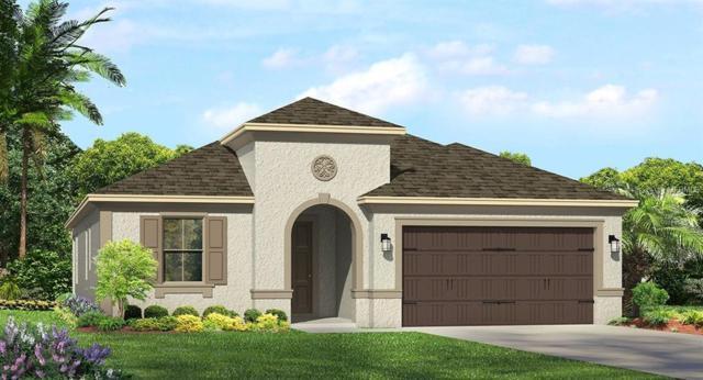 4634 Tivoli Drive, Wesley Chapel, FL 33543 (MLS #T3146266) :: Team Pepka