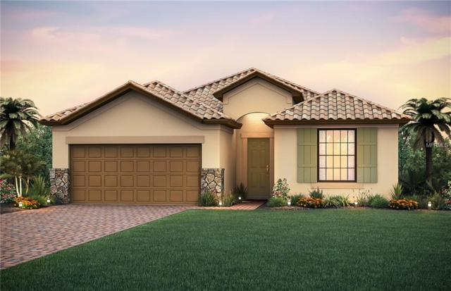 12016 Blue Hill Trail, Lakewood Ranch, FL 34211 (MLS #T3146280) :: McConnell and Associates