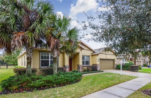 15715 Starling Water Drive, Lithia, FL 33547 (MLS #T3146283) :: Dalton Wade Real Estate Group