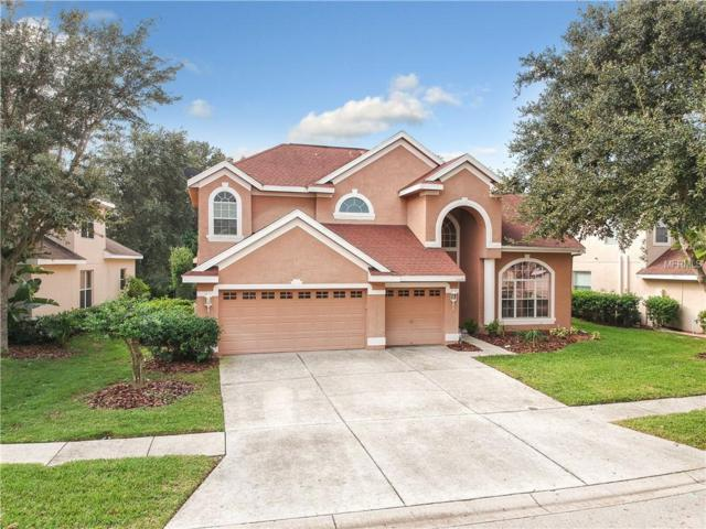 10219 Deercliff Drive, Tampa, FL 33647 (MLS #T3146292) :: Team Bohannon Keller Williams, Tampa Properties