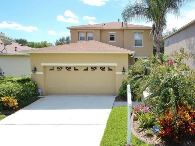 2316 Spring Hollow Loop, Wesley Chapel, FL 33544 (MLS #T3146298) :: Team Bohannon Keller Williams, Tampa Properties