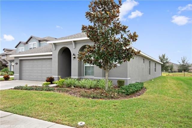19218 Verdant Pasture Way, Tampa, FL 33647 (MLS #T3146313) :: Team Bohannon Keller Williams, Tampa Properties