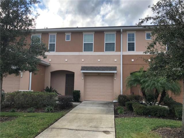 2813 Birchcreek Drive, Wesley Chapel, FL 33544 (MLS #T3146351) :: Team Bohannon Keller Williams, Tampa Properties