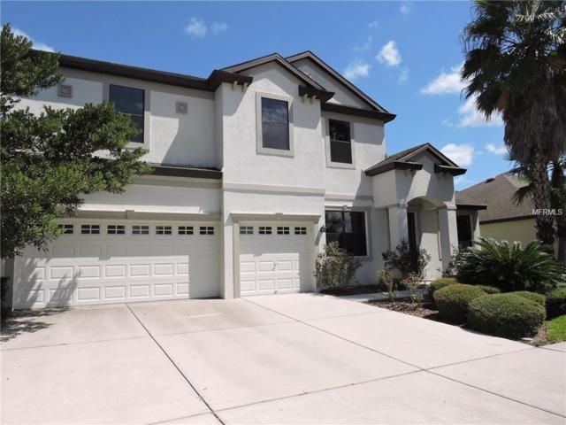 7931 Hampton Lake Drive, Tampa, FL 33647 (MLS #T3146369) :: Team Bohannon Keller Williams, Tampa Properties