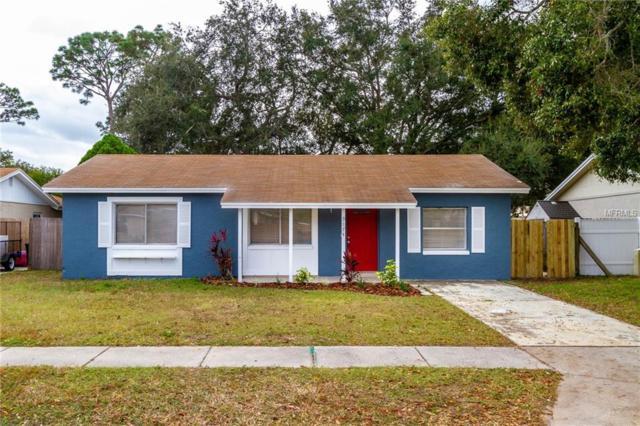 9174 92ND Avenue, Seminole, FL 33777 (MLS #T3146407) :: Dalton Wade Real Estate Group