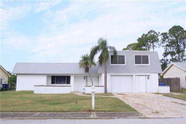3519 Richboro Drive, Holiday, FL 34691 (MLS #T3146423) :: Premium Properties Real Estate Services