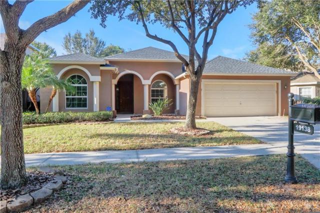 19138 Dove Creek Drive, Tampa, FL 33647 (MLS #T3146474) :: Andrew Cherry & Company