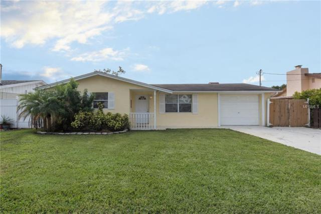 5530 Riddle Road, Holiday, FL 34690 (MLS #T3146497) :: Cartwright Realty