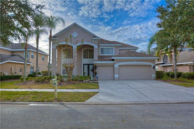 10143 Deercliff Drive, Tampa, FL 33647 (MLS #T3146507) :: Team Bohannon Keller Williams, Tampa Properties