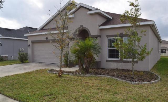 3851 Pacente Loop, Wesley Chapel, FL 33543 (MLS #T3146511) :: Cartwright Realty