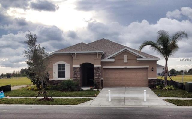 33227 Whisper Pointe Drive, Wesley Chapel, FL 33545 (MLS #T3146519) :: RE/MAX CHAMPIONS