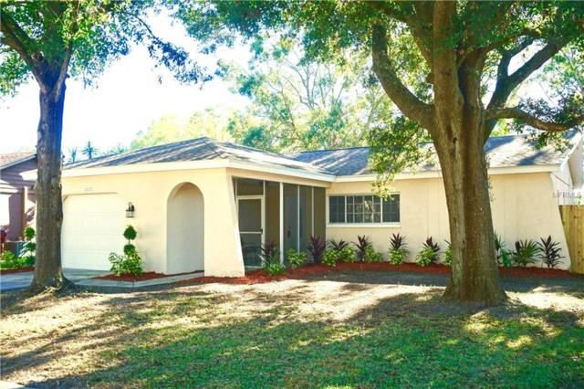 1972 Groveland Road, Palm Harbor, FL 34683 (MLS #T3146548) :: Andrew Cherry & Company