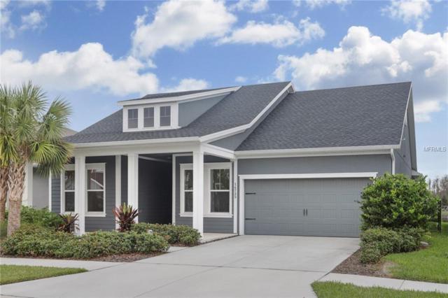 14735 Caravan Avenue, Odessa, FL 33556 (MLS #T3146574) :: Team Bohannon Keller Williams, Tampa Properties