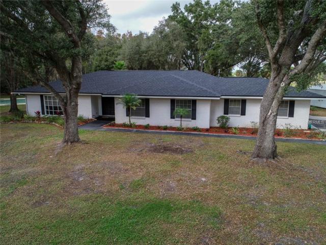 6055 Old Pasco Road, Wesley Chapel, FL 33544 (MLS #T3146593) :: Cartwright Realty