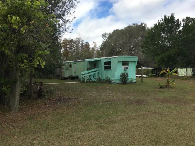 17301 Simmons Road, Lutz, FL 33548 (MLS #T3146640) :: Team Bohannon Keller Williams, Tampa Properties