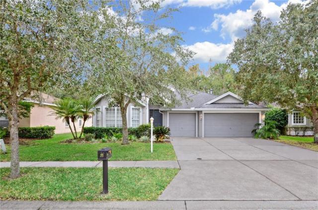 6011 Catlin Drive, Tampa, FL 33647 (MLS #T3146645) :: Andrew Cherry & Company