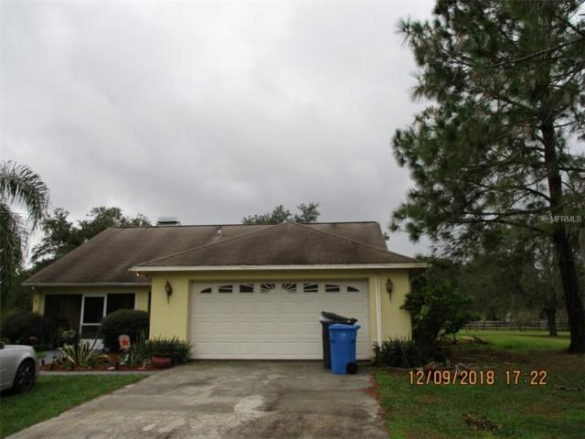 1304 Williams Road, Plant City, FL 33565 (MLS #T3146648) :: Welcome Home Florida Team