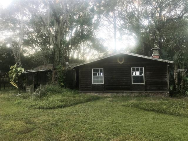 3815 Cooper Road, Plant City, FL 33565 (MLS #T3146659) :: Welcome Home Florida Team