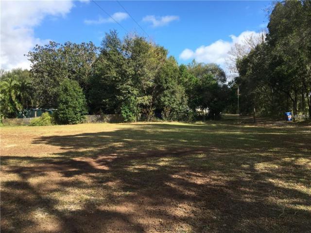 17301 Simmons Road, Lutz, FL 33548 (MLS #T3146713) :: Team Bohannon Keller Williams, Tampa Properties