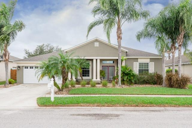 5233 Spectacular Bid Drive, Wesley Chapel, FL 33544 (MLS #T3146724) :: Cartwright Realty