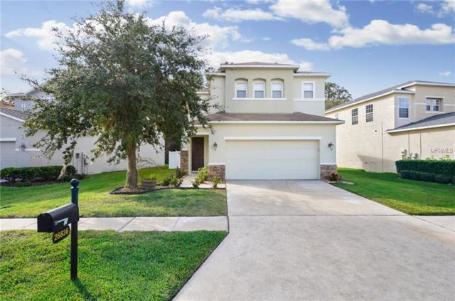 26836 Stillbrook Drive, Wesley Chapel, FL 33544 (MLS #T3146732) :: Team Bohannon Keller Williams, Tampa Properties