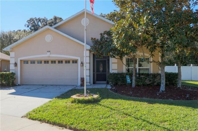 6241 Tigerflower Court, Land O Lakes, FL 34639 (MLS #T3146767) :: Cartwright Realty