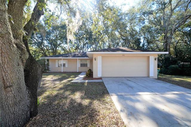 2716 N Dellwood Drive, Eustis, FL 32726 (MLS #T3146774) :: Team Touchstone