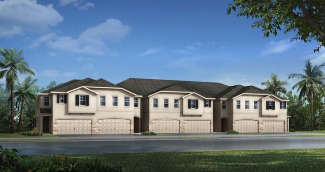 14225 Pondhawk Lane 52H, Tampa, FL 33625 (MLS #T3146782) :: Cartwright Realty