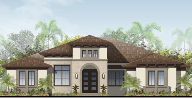 14903 Bassinger Lane, Lithia, FL 33547 (MLS #T3146819) :: Medway Realty