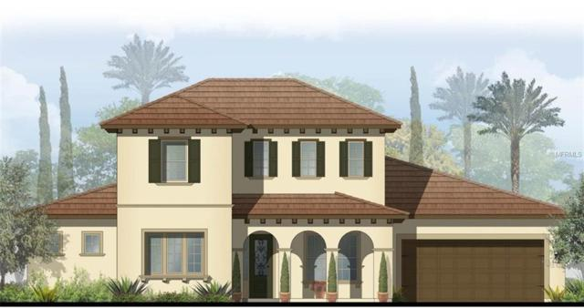 14907 Tavares Mill Avenue, Lithia, FL 33547 (MLS #T3146821) :: The Duncan Duo Team