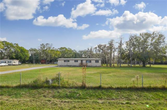 17930 Dogwood Drive, Lutz, FL 33558 (MLS #T3146905) :: The Duncan Duo Team