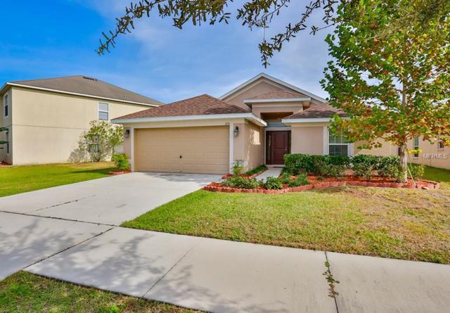 1231 Sheridan Bay Drive, Ruskin, FL 33570 (MLS #T3146922) :: Medway Realty