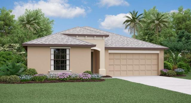 15619 Demory Point Place, Ruskin, FL 33573 (MLS #T3146973) :: Medway Realty