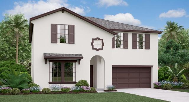 7108 Ozello Trail Avenue, Ruskin, FL 33573 (MLS #T3146991) :: Medway Realty