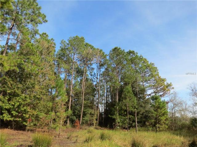 Alligator Bobs Place, Plant City, FL 33565 (MLS #T3146997) :: Welcome Home Florida Team