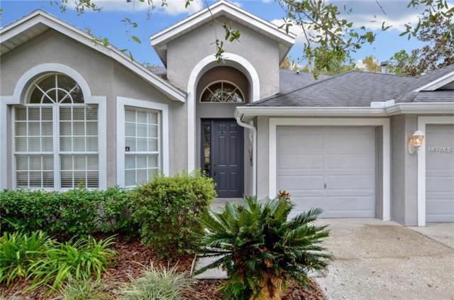6011 Catlin Drive, Tampa, FL 33647 (MLS #T3147047) :: Team Bohannon Keller Williams, Tampa Properties