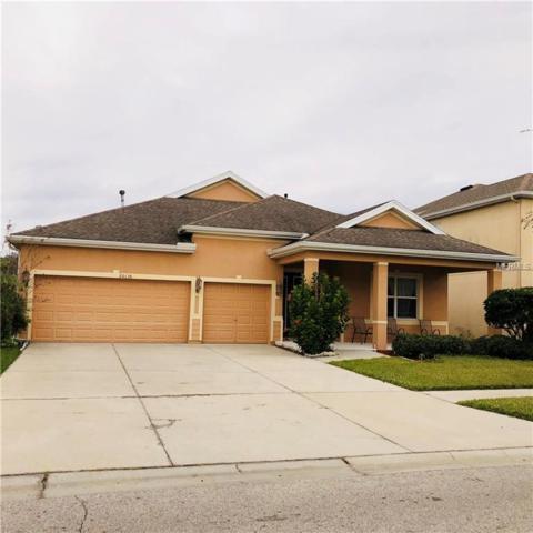 20136 Oakflower Avenue, Tampa, FL 33647 (MLS #T3147053) :: Baird Realty Group