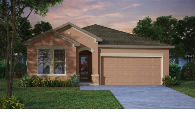 13903 Kingfisher Glen Drive, Lithia, FL 33547 (MLS #T3147088) :: The Duncan Duo Team