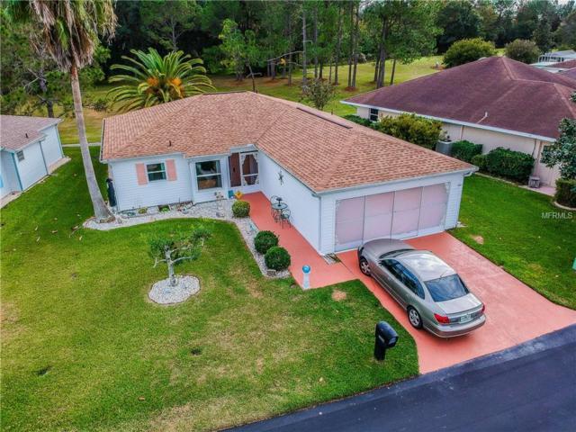 29314 Princeville Drive, San Antonio, FL 33576 (MLS #T3147106) :: Team Bohannon Keller Williams, Tampa Properties