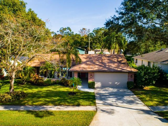 3133 Lake Valencia Lane E, Palm Harbor, FL 34684 (MLS #T3147148) :: Beach Island Group