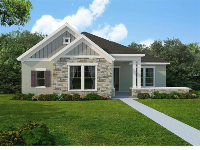 6110 Watercolor Drive, Lithia, FL 33547 (MLS #T3147185) :: The Duncan Duo Team