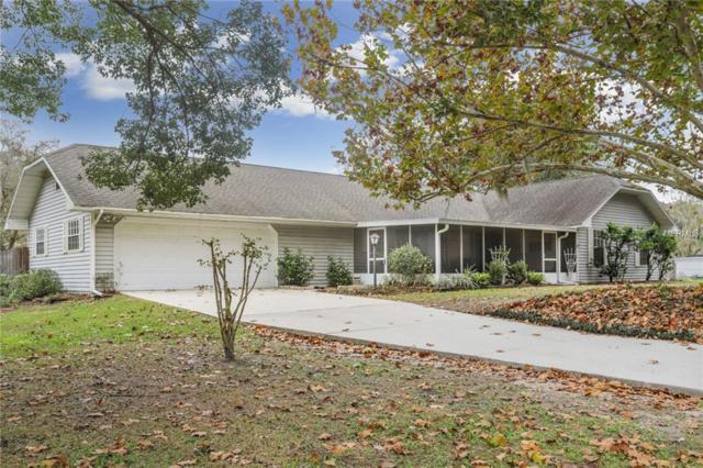 28229 Deedra Drive, Wesley Chapel, FL 33544 (MLS #T3147212) :: Team Bohannon Keller Williams, Tampa Properties